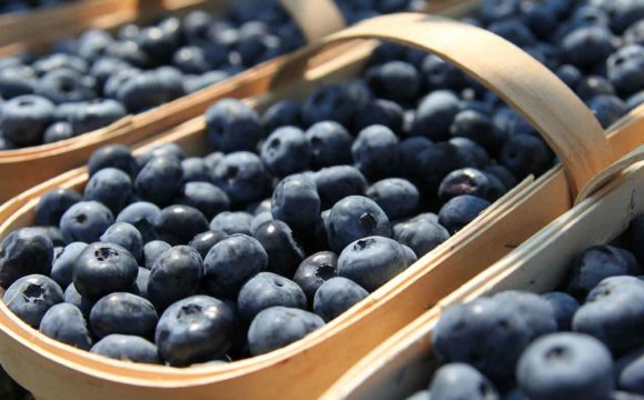 Can't find Jersey-fresh organic blueberries?