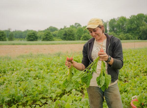Jess Brandeisky, Fernbrook Farm