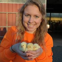 Kaitlin Morley, Polnasek Poultry Farm