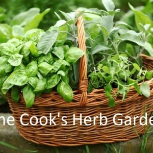 Culinary Herbs of the World