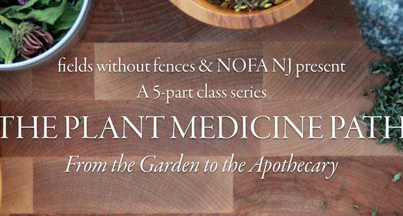 NJ Medicinal Herbs