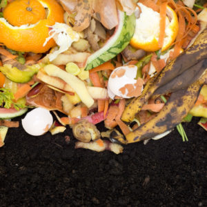 Creative Ways to Manage Your Food Waste