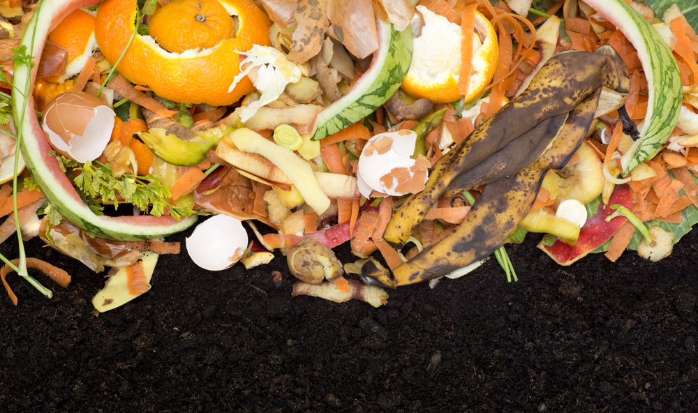 Princeton Environmental Commission Food Waste Event