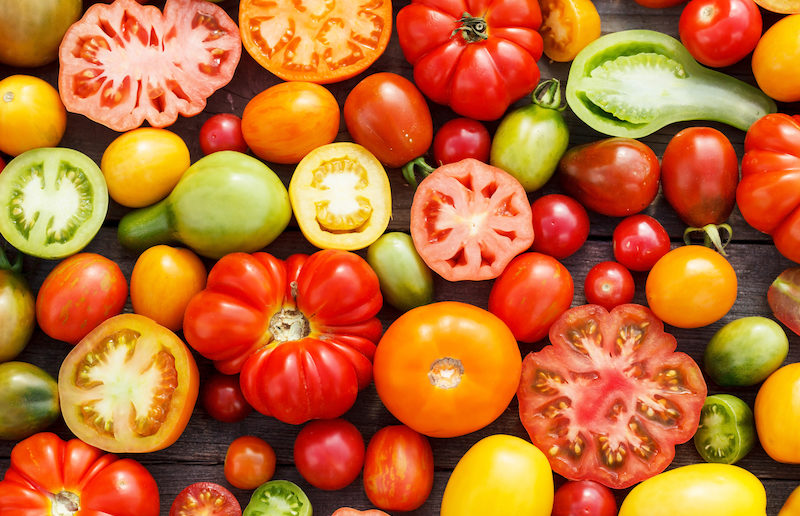 NOFA-NJ and Princeton Public Library Team Up For Exciting Celebration of Tomatoes