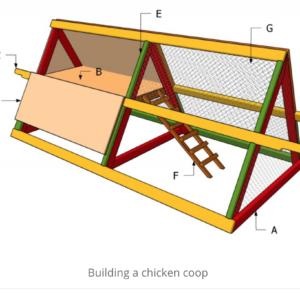 Building Basics: Mobile A-Frame Chicken Coop POSTPONED UNTIL SPRING