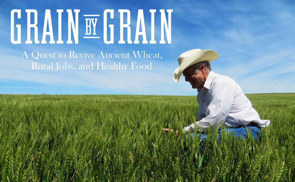 Grain by Grain: Reviving Diverse Grains, Rural Jobs, and Healthy Food