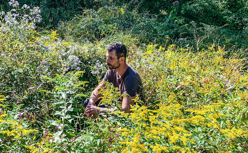 Evan Abramson, Landscape Interactions