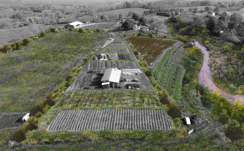 Farming for Biodiversity