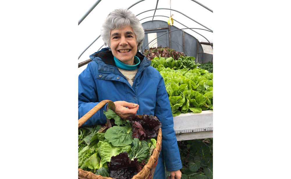Stephanie Harris, Stone Hedge Farm